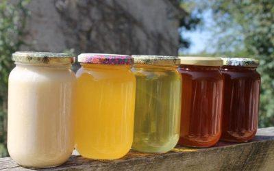 Les couleurs du miel
