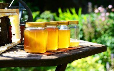 Pourquoi consommer du miel français ?